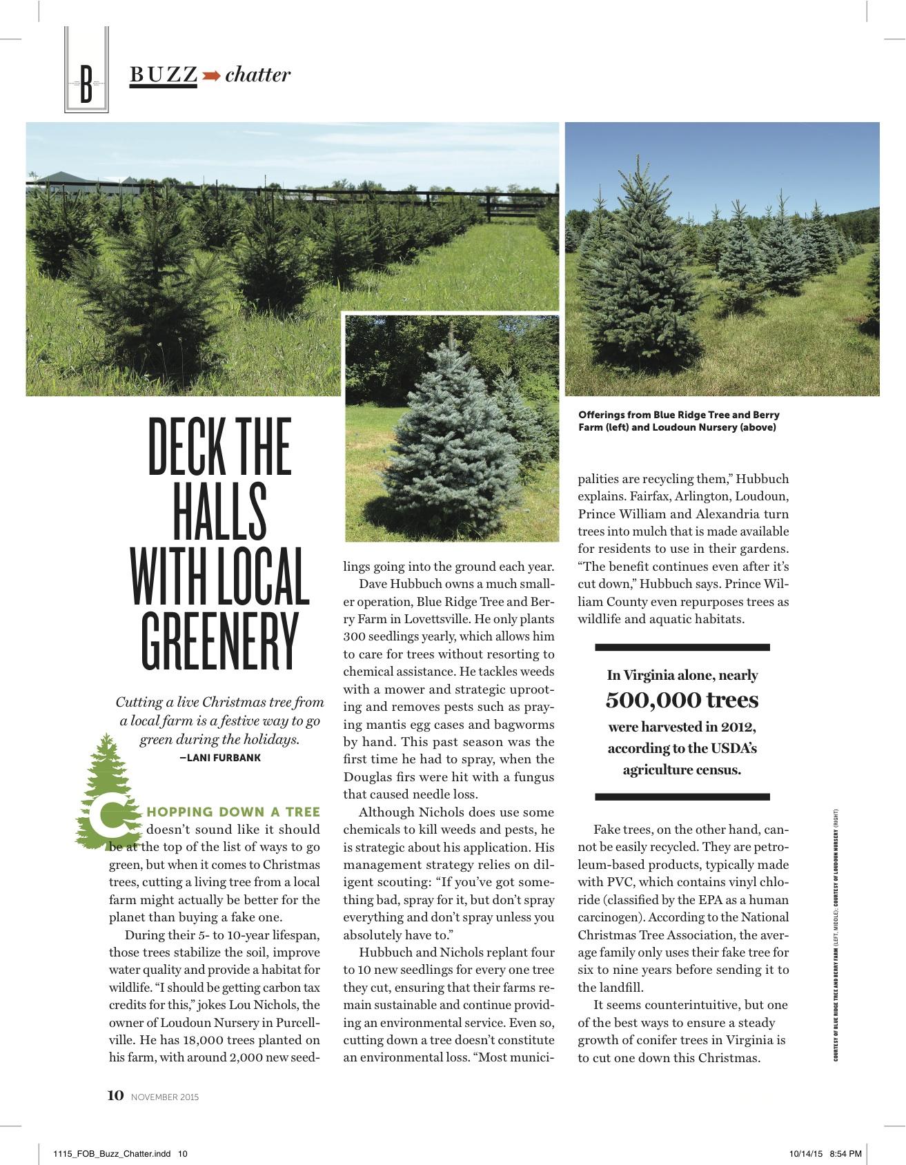 NV Mag Christmas Trees