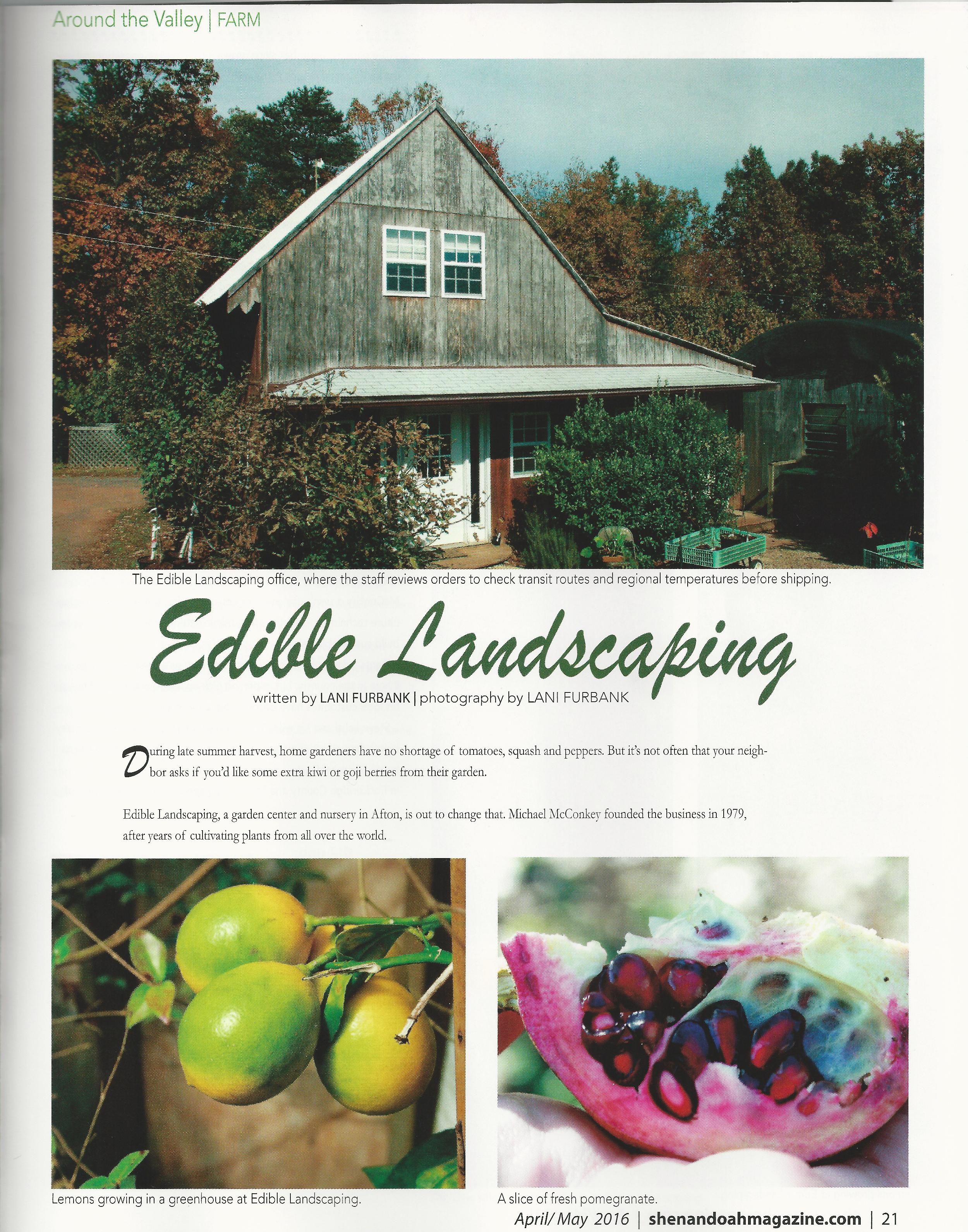 SL Edible Landscaping 1-page-001