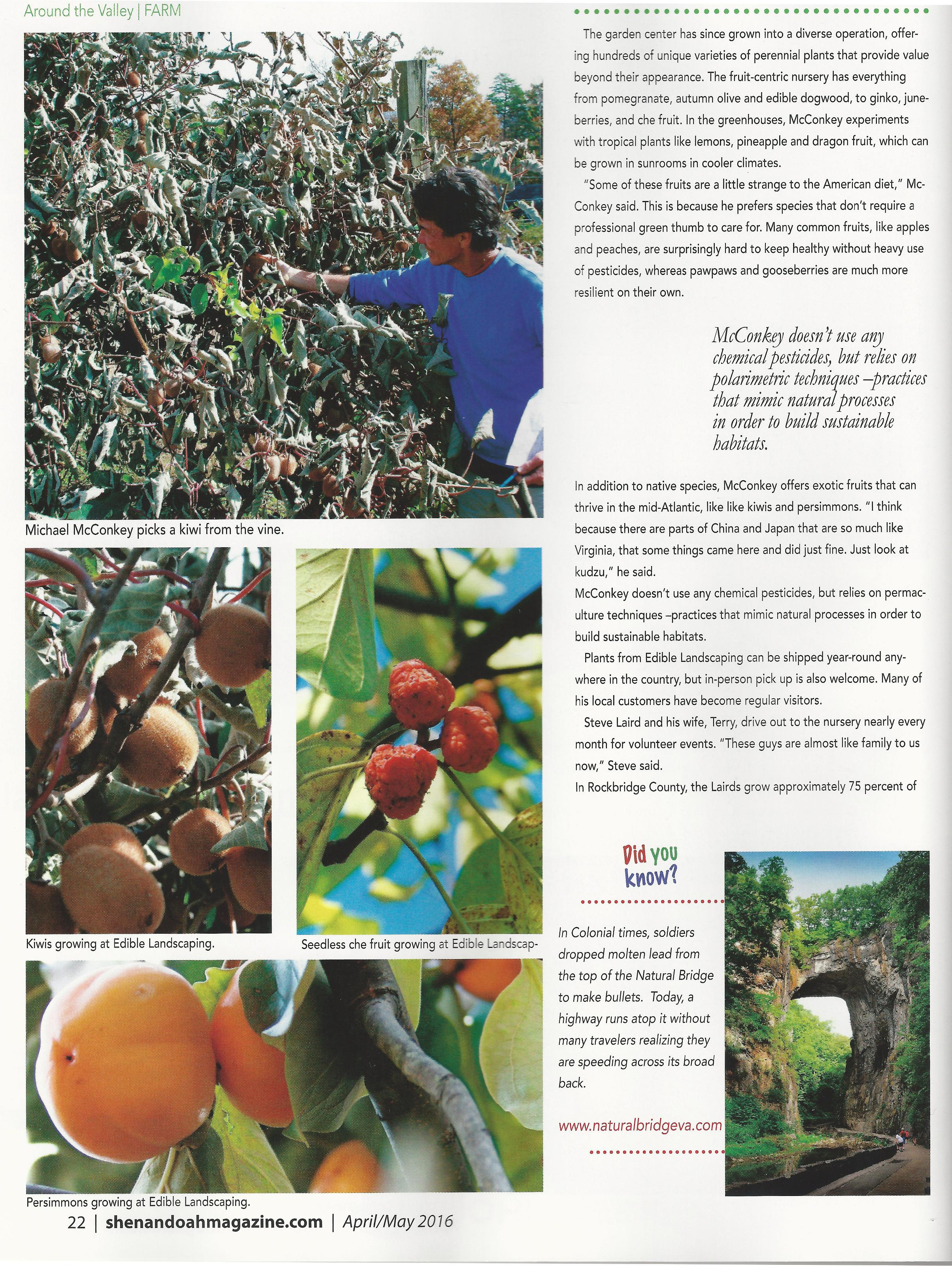 SL Edible Landscaping 2-page-001