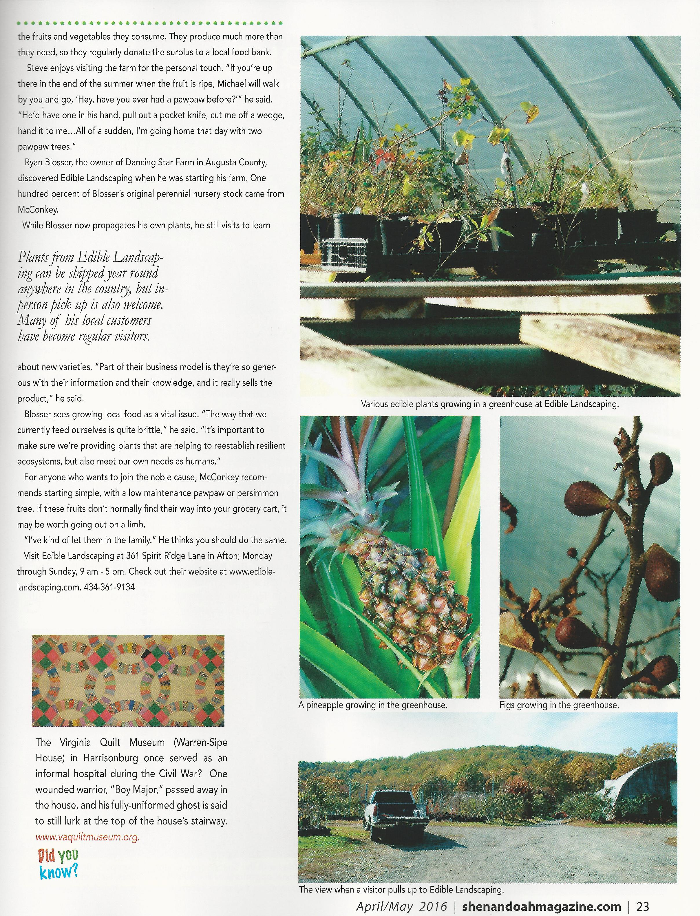 SL Edible Landscaping 3-page-001