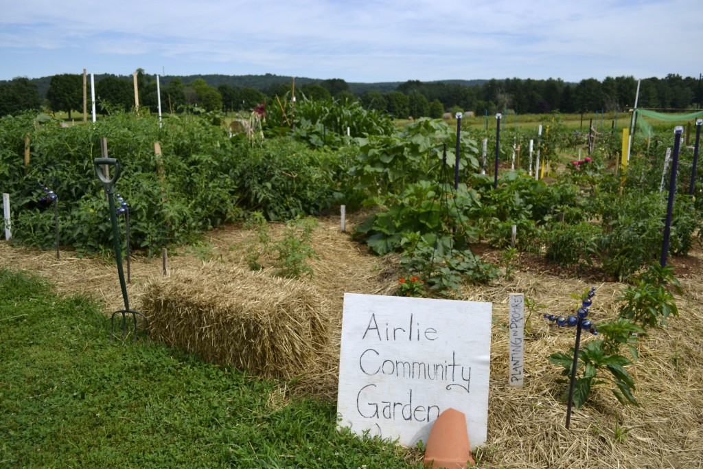 community_garden Courtesy Airlie
