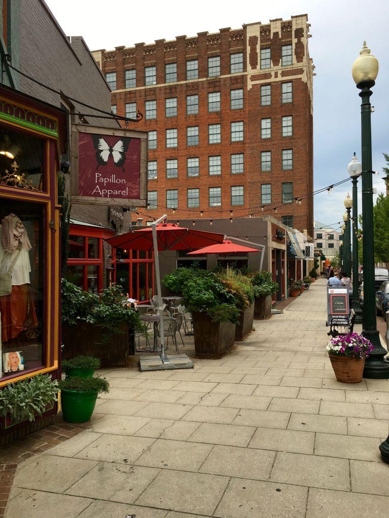 downtown-asheville-by-lani-furbank-small