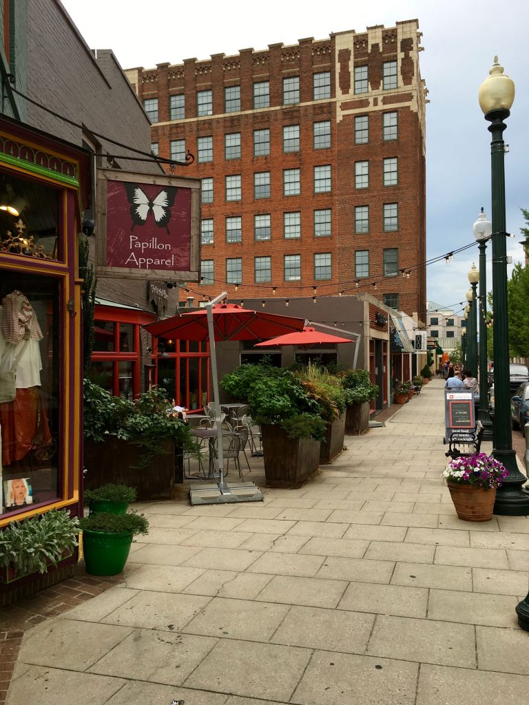 downtown-asheville-by-lani-furbank-small